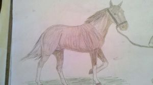 Calculated Risk-1 yr ref by patchesofheaven74