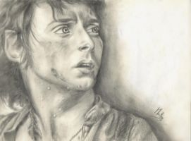 Frodo by ArtRotring