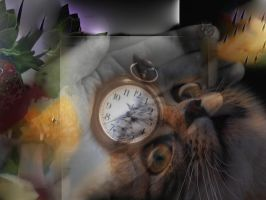 One cat,One Fruit,One clock by nikkisoul