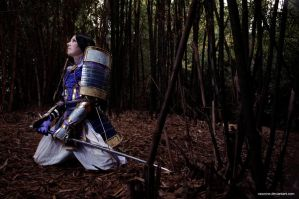 Samurai Warriors - Mitsuhide by vaxzone