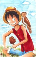 Luffy and Friend by Spilled-Sunlight