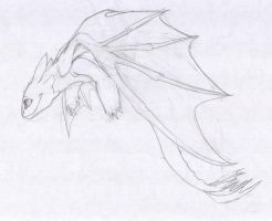 toothless by aacrell