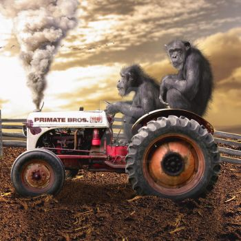 Tractor by bruno-sousa