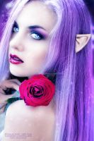 Roses Elf by VampyrEmpress