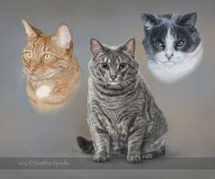 Pet portrait - Naners, Squeakers and Cuddles by elektroyu