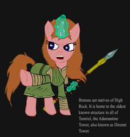 Ponified Skyrim loading screen: Breton by glue123