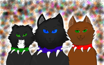 bloodclan cats by Silverclaw280