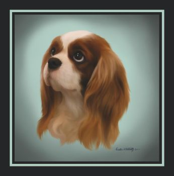 JT the Cavalier King Charles by liengod