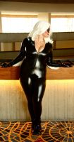 Black Cat 13 by TimeLordmk