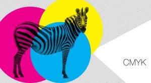 wallpaper CMYK zebra by rodrigoounao