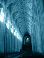 gothic cathedral 2 by CarpeNoctem-Stock