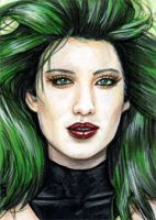 Polaris Sketch Card 1 by veripwolf