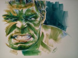 the hulk by him560