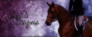 Bay Horse Picture by EquideDesigns