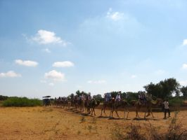 journey with camels by idrawnaked