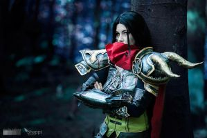 Diablo III : Ready to hunt? by Shappi
