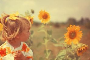 Sunflowers by Kennadee