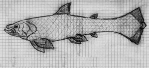 the barracuda coelacanth by PeteriDish