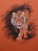 TIGER FROM JUNGLE by Repaul
