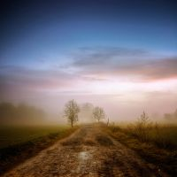 everlasting gaze XIII by Ditze