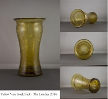 Yellow Vase Stock Pack by The-Lionface