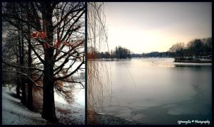 winter frames by Iulian-dA-gallery