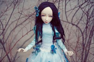 Alice 04 by jolanta-robert