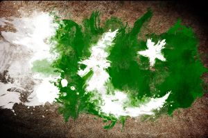 pakistan paint wallpaper by mu6