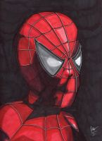 Spiderman by 4StarsChicago