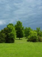 Stock Image - Green Landscape - 02 by Life-For-Sale