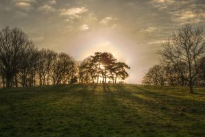Tales from Hampstead Heath 3 by Isyala