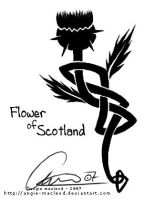 Flower of Scotland by ValkAngie