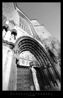 Uppsala Cathedral by Mr808