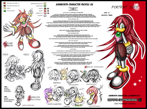 ASHWORTH Character Profile 02 by darkspeeds