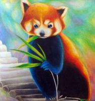 Red Panda by PastoralSymphony