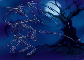 Skeletal Dragon Revisited by Ciarra