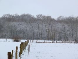 snow 20 by tegalus