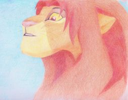 Simba by lizabethparent