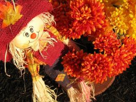 fall by mandee-was-here
