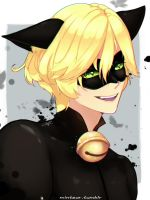 {FA}Chat Noir01 by Minimin7