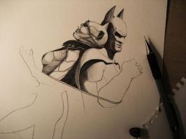 Batman and Catwoman WIP by emicathe