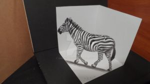 Drawing 3D Zebra, Trick Art on Paper by VamosArt