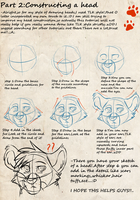 Head Tutorial by Rain-Strive