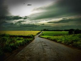 road to nowhere by leocavallini