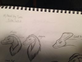 Mythical dog type: Extra traits 2 (1 of 4) by Dinoboy134