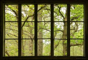 Big Window by BAproductions