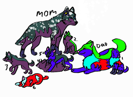 Wolf adopts-OPEN-PRICE DROP!!!! by ButtonsTheCat-Adopts