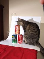 Everyone Wants To Be A Coke Products Model... by ajm113