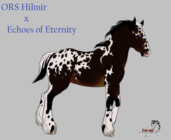 ORS Hilmir x Echoes of Eternity - Colt by FireSkip