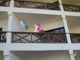 Roommates On The Balcony by OJhat